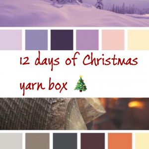 12 days of Christmas Yarn Box